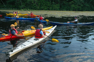 Introduction to Kayaking (Weeknight) in Nahanton Park
